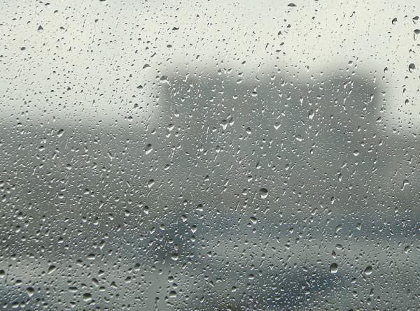 Тропический ливень: в Москве побит рекорд по осадкам за 70 лет