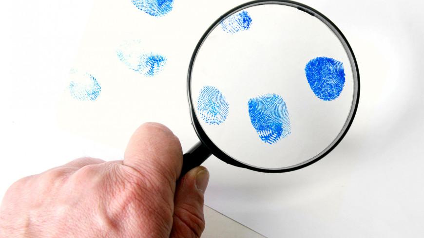 Тест: реальное преступление или художественный вымысел?