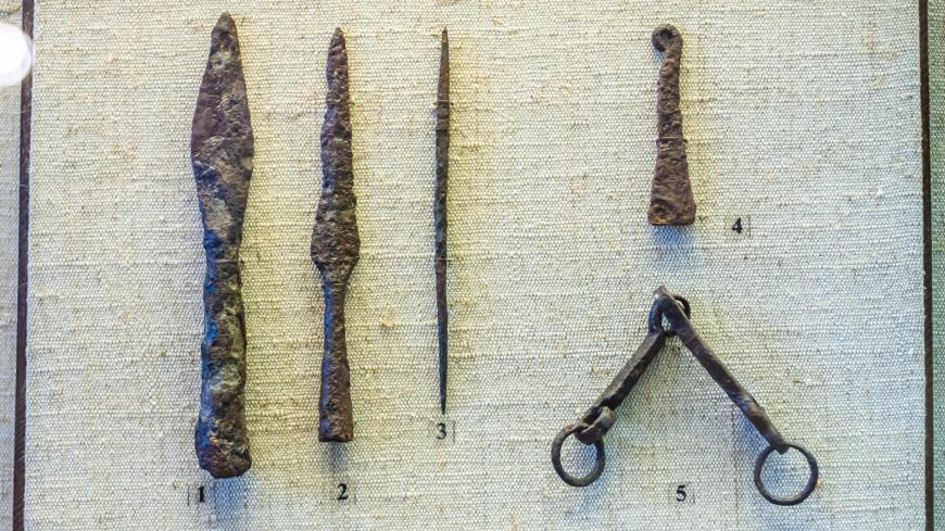 В ЮАР нашли отравленную стрелу возрастом 60 тысяч лет