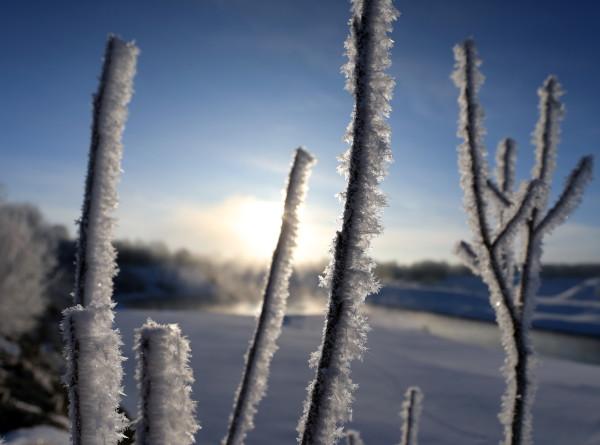 Мороз и солнце: к середине недели будет настоящая декабрьская погода. Подробный прогноз