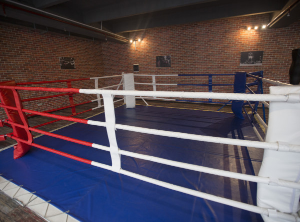 Президент WBC Маурисио Сулейман утвердит российских судей на бой Шведенко-Осипов