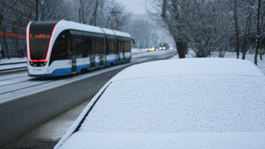 Какой будет погода в Московском регионе на предстоящей неделе