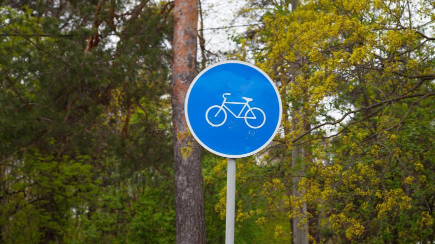 В Ставропольском крае построят велотрассу длиной 75 км