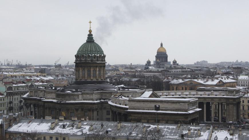 В Санкт-Петербурге сильный ветер повалил деревья и дорожные знаки