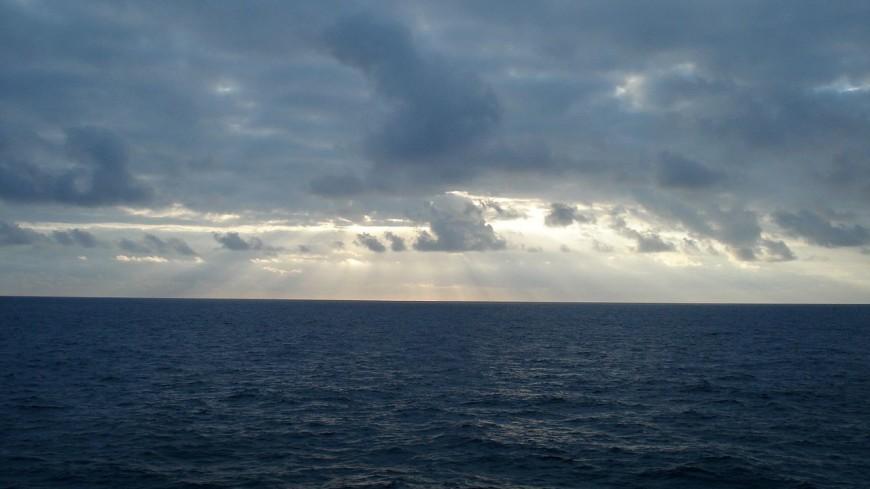 Водоросли-убийцы и чудовища Марианской впадины. «Секретные материалы» раскроют страшные тайны Тихого океана