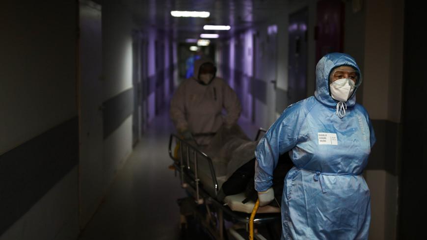 Главный инфекционист Югры попала в реанимацию с коронавирусом