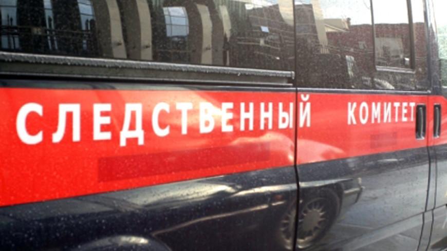 СК возбудил уголовное дело после аварийной посадки Ан-124 в Новосибирске