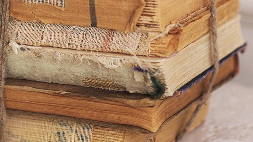 """© Фото: Елизавета Шагалова, """"МТРК «Мир»"""":http://mir24.tv/, книги, книга"""