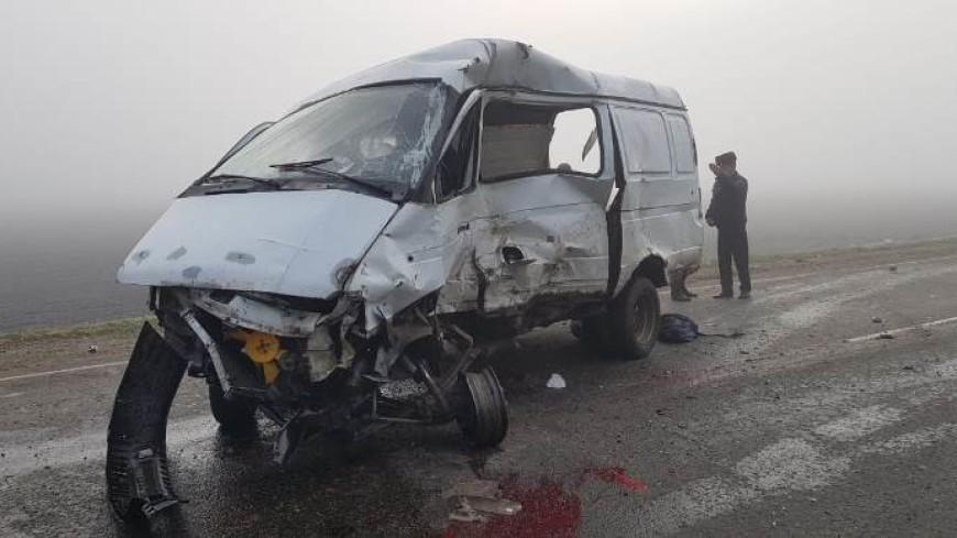 ДТП с микроавтобусом в Краснодарском крае: погибли шесть человек