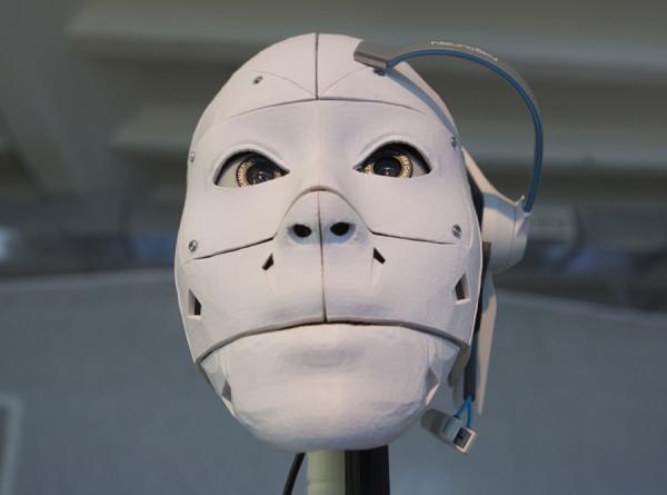 Вкалывают роботы – счастлив ли человек?