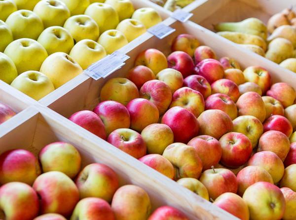Запасы на зиму: в Беларуси формируют «стабфонды» овощей и фруктов