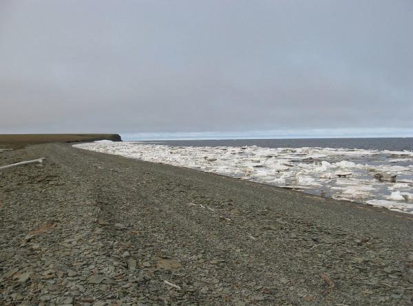 Климатологи: Море Лаптевых впервые не замерзло в конце октября