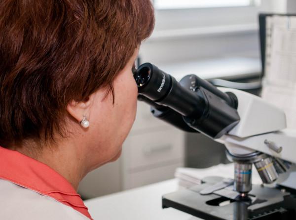 Влияние коронавируса проверили на искусственных мини-легких
