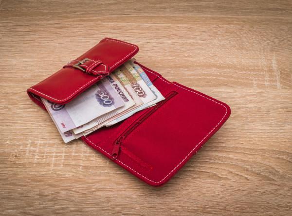 Россиянам расскажут о личном бюджете, подушке безопасности и защите от финансовых мошенников