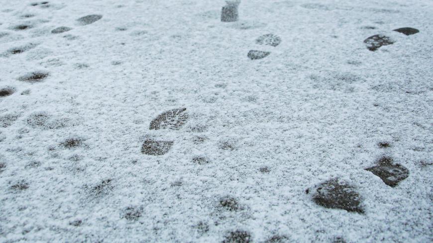 В Москве прошел первый осенний снег с дождем