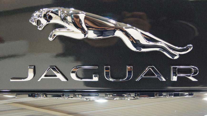 "Фото: ""Jakub ""Flyz1"" Maciejewski, Викимедиа"":https://commons.wikimedia.org/wiki/Main_Page, логотипы, машина, ягуар, jaguar"