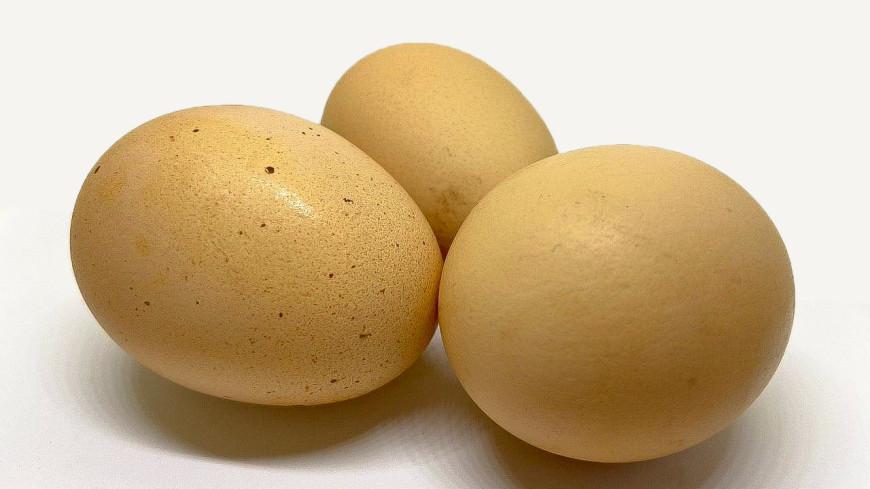 Хуже яда: названы шесть опасных видов куриных яиц