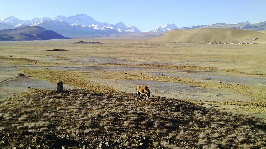 На Тибетском плато нашли следы Денисовского человека