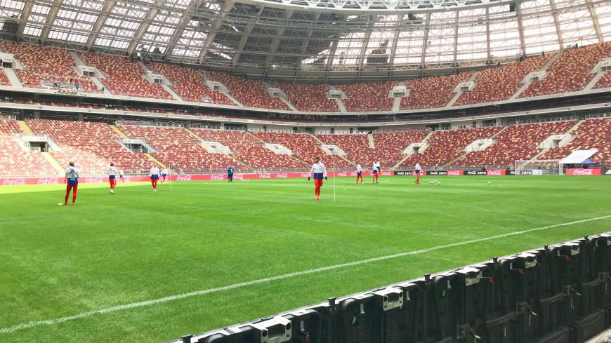 Маску не забудьте: на каких условиях спортивный мир в России живет в пандемию