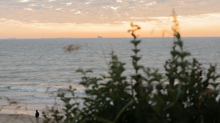Зеленоградск, Море