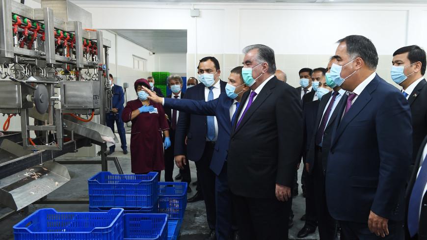 Эмомали Рахмон открыл новые цеха на птицеводческой фабрике