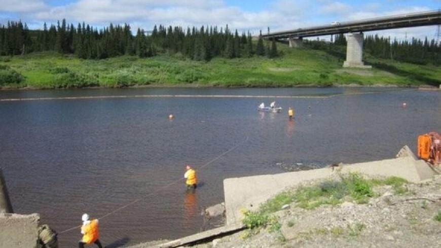 Власти НАО назвали причину появления на реке Колва радужной пленки