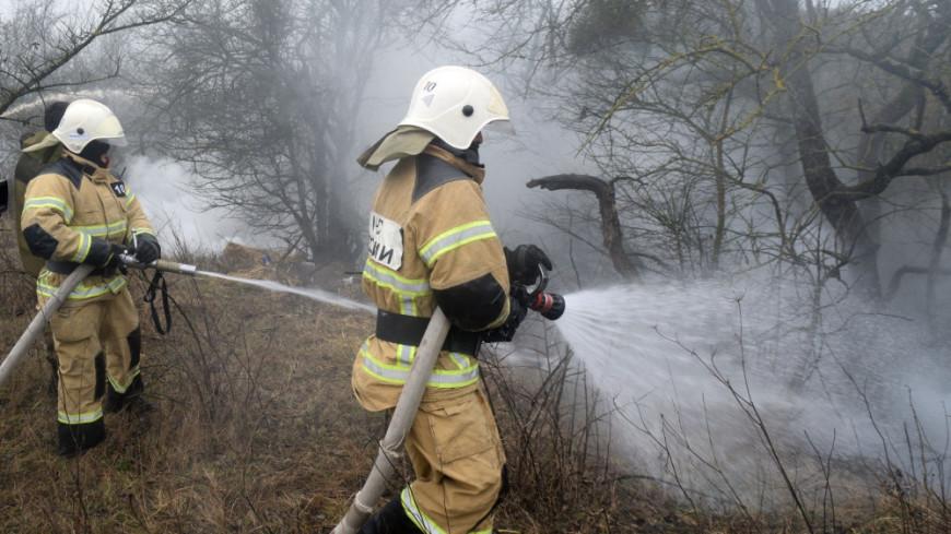 В Ростовской области потушили лесной пожар на площади 347 га
