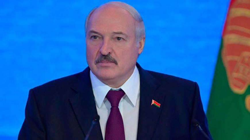 Лукашенко призвал производить картон в Беларуси, а не завозить из Польши
