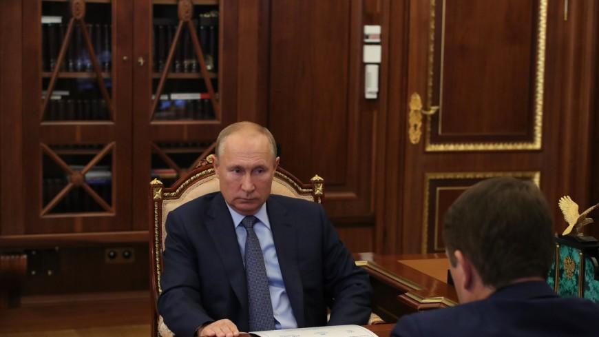 Путин поблагодарил актера Сигала за помощь в спасении популяции байкальского омуля