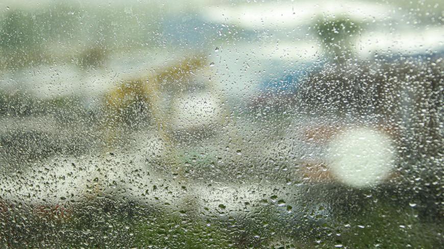 погода, дождь, гроза, непогода, ливень, капли, мокро, градусы, градусник, гидрометцентр,