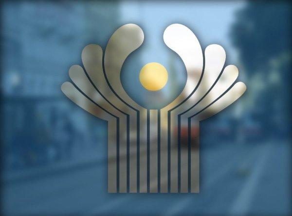 На Межпарламентской ассамблее СНГ обсудили новые технологии наблюдения за выборами