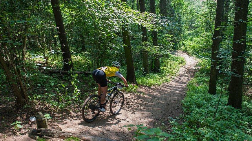 В США брошенный в горах джип перегородил велотрассу