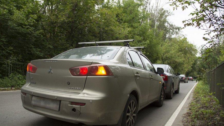 Московских водителей предупредили о брачующихся лосях