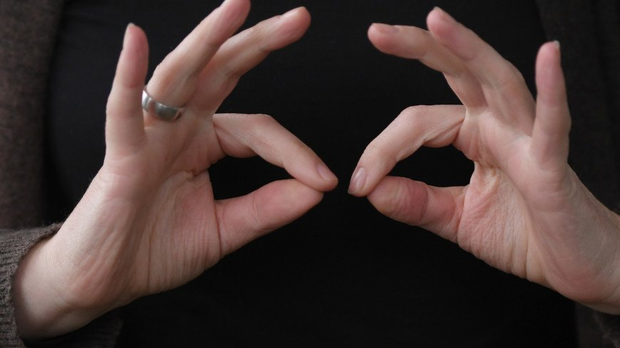 Придуманный детьми и освоенный обезьянами: самое интересное о языке жестов