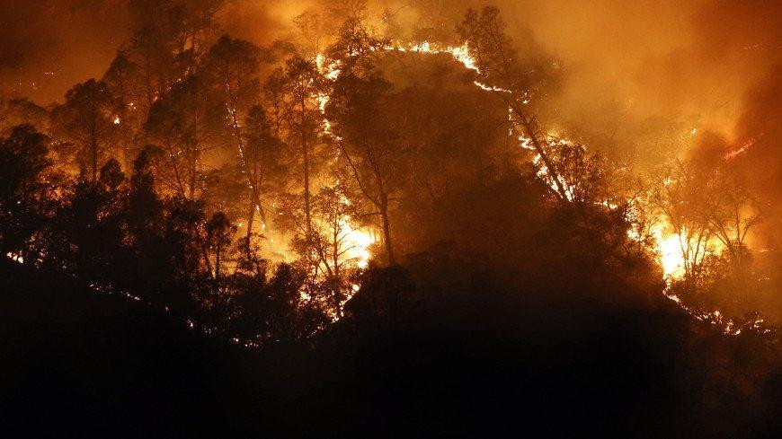 В трех округах Калифорнии ввели режим ЧС из-за лесных пожаров
