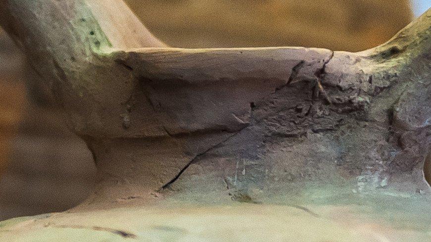 Каменные орудия показали, когда люди заселили Западную Европу