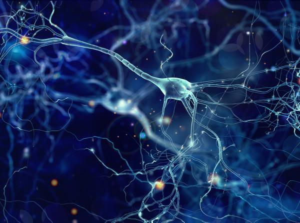 Корейские ученые создали реагирующую на свет нейросеть
