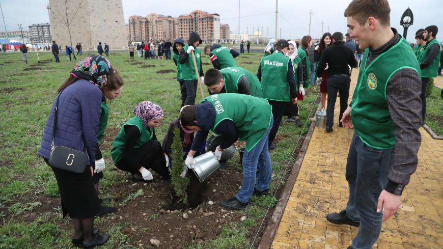 Волонтеры акции «Сад памяти» увековечили подвиг Юрия Гагарина