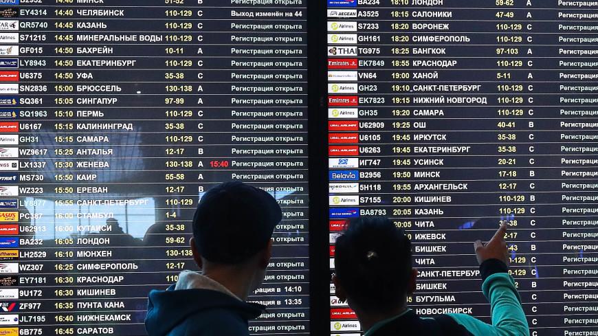 Оперштаб рассказал, когда будет принято решение по рейсам в Египет