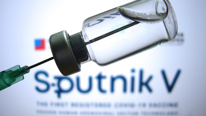 Молдова одобрила снятие пошлин с партии вакцины «Спутник V»