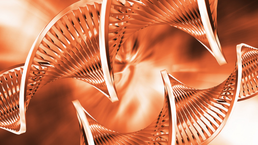 «Секретное оружие»: Homo sapiens выжили благодаря генам творчества