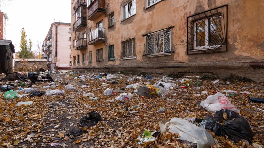 «Виновник может понести уголовное наказание»: как наказать соседей, которые мусорят из окон?
