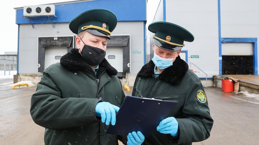 Российские таможенники пресекли ввоз в страну ввоз 150 кг гашиша