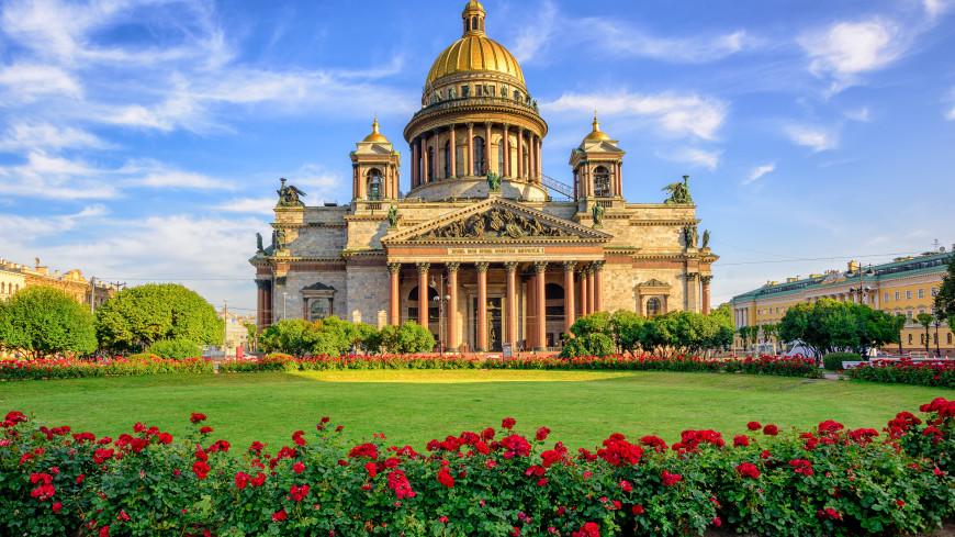 Полмиллиона цветов к майским праздникам украсят Санкт-Петербург