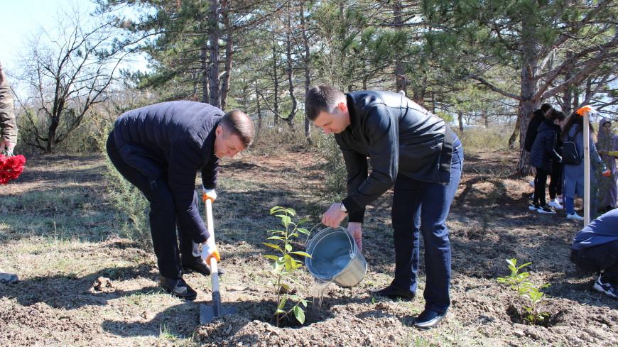 В Крыму разбили Сад памяти, посвященный жертвам концлагеря «Толле»