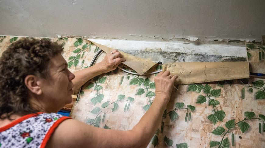 Чем опасна плесень в квартире и к каким заболеваниям она может привести?