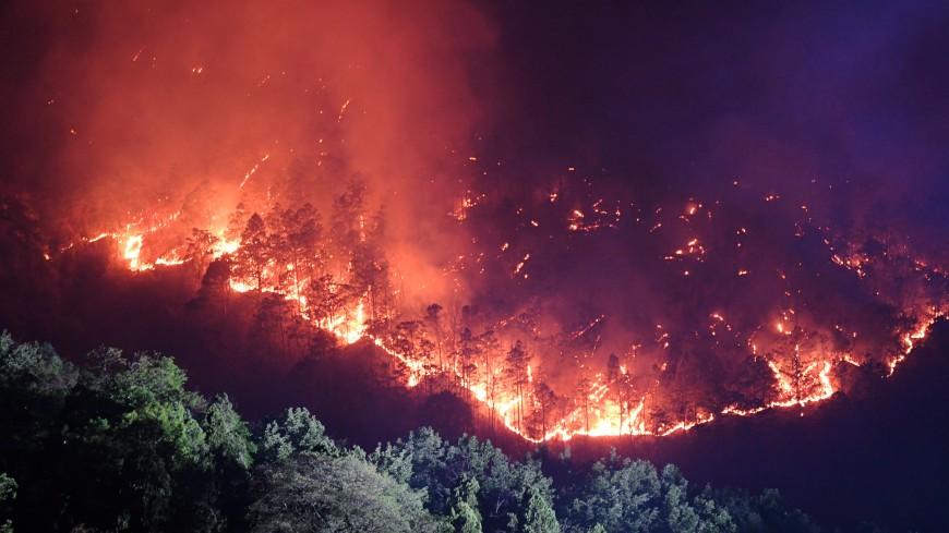 Дым лесных пожаров в Китае принесло в Амурскую область