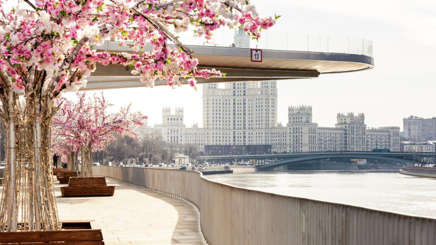 На радость садоводам и любителям солнца: погода в центре России бьет рекорды тепла