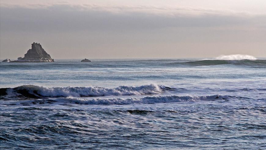 Браконьеры выловили более пяти тонн минтая у берегов Камчатки