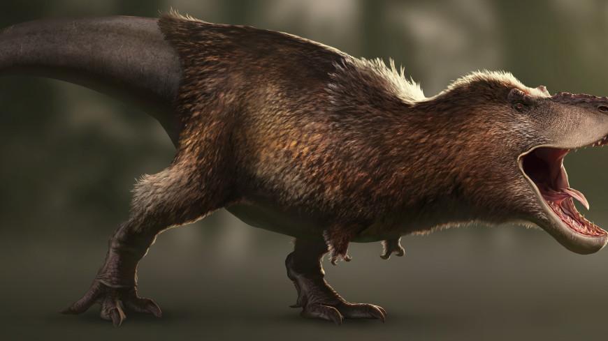 Палеонтологи подсчитали общее количество тираннозавров на планете